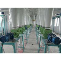 专业生产面粉机单机设备_面粉机单机价格_中之原
