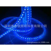 LED灯带灯条-3528灯条120灯  蓝光灌胶防水