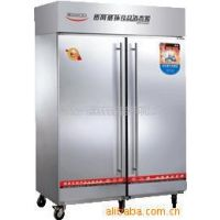 亿高RTP1000H热风食具消毒柜/餐盘消毒碗柜/不锈钢双门立式大型柜