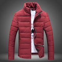 供应802P80 冬装加厚棉衣男立领棉衣保暖男外套拉链