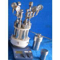 多位高压反应釜/多位高压反应器/定制欧士特多位高压反应釜/微型反应器