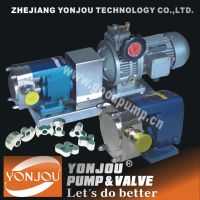 yonjou/永球牌不锈钢转子泵LQ3A