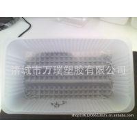 供应pp饼干盒,半透明食品盒,一次性塑料盒,山东地区