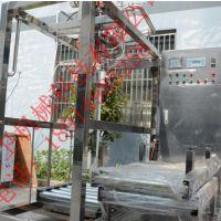 无菌灌装机 无菌大袋灌装机 单头无菌灌装机 双头无菌灌装机