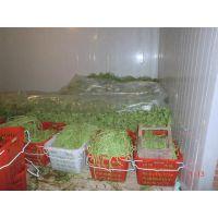 安徽合肥果品蔬菜花卉保鲜库设计定做报价