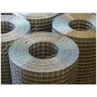 供应供应优质电焊网,网片
