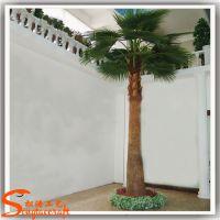 厂家供应仿真蒲葵树 室内假蒲葵树 园林景观工程仿真棕榈树