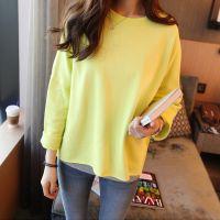 韩国代购 2014秋装新款韩版纯色加厚打底衫女装上衣 一件代发