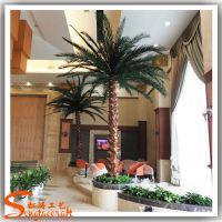 仿棕榈树厂家直销 仿真棕榈树酒店装饰 保鲜棕榈树