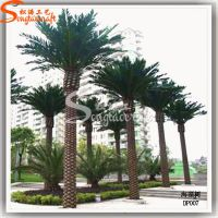 高端定制室外装饰仿真树 大型人工海枣树 玻璃钢海藻树