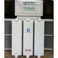 SCR可控硅整流器0-20000V大功率高压电源润峰SCR可控硅整流器电源设备厂家