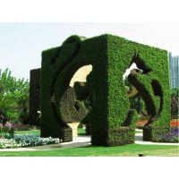 供应山东植物造型景观设计、山东植物造型景观工程、山东植物造型景观公司