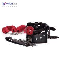 供应美国Roomfun房趣:手口塞球项圈组合装 激情情趣用品,激情道具,PR-009