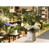 鲜花植物盆栽种植袋用面材料,防水透气耐腐蚀,轻盈坚韧撕不破,可印染任何颜色