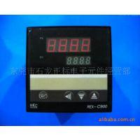 低价供应智能温控仪REX-C900(图)