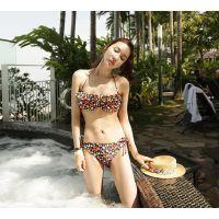 2014新款 沙滩小碎花比基尼游泳衣 日韩女泳衣泳装亦蔻14013
