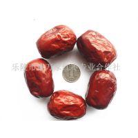 供应一级新疆红枣 营养绿色量大价低