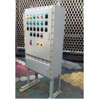 渝荣防爆BDG58系列钢板焊接防爆配电柜按图定制