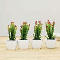 厂家直销仙人掌花小盆栽 精品创意小盆栽优良品质