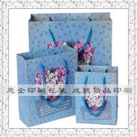 东莞高档礼品袋竖版 黄江商务回礼袋 高埗手提袋纸袋子印刷