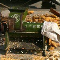 玉米撕皮脱粒机 收获机械专业玉米脱粒机 不烂芯