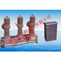 华仪ZW8K-12型户外高压交流分界真空断路器 国家电网中标产品