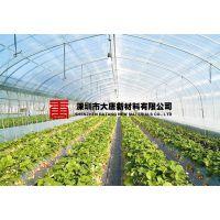 农业蔬菜养殖大棚-园林温室大棚-PC阳光板耐力板 唐山秦皇岛邯郸