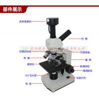 电子显微镜 绿康制造