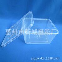 供应透明塑料便当盒,一次性快餐打包盒 一次性饭盒