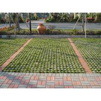 植草砖园林绿化砖/红色200*300mm