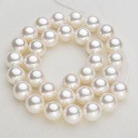 批发供应10mm白色母贝珠项链 深海贝壳打磨砗磲 度葆丽膜 低价