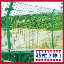 双边丝护栏网、圈地常用双边丝护栏网批发/价格