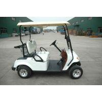 供应陕西益高EG2028K2座电动高尔夫车
