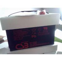常德CSB蓄电池供应商