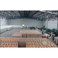 万吨水果保鲜冷库工程造价要多少,果蔬气调库安装设计,水果冷库优势?