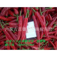 供应2018年内蒙古通辽开鲁金塔系列红鲜椒市场价格