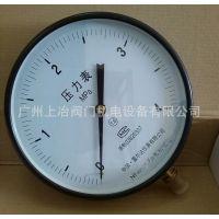 中国雷尔达仪表有限公司 卫生型隔膜压力表 减压器 流量计温度表