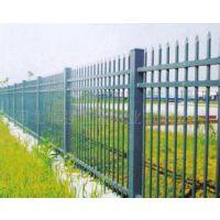 学校围栏 厂区围栏 锌钢护栏厂家供应生产欢迎各界人士洽谈