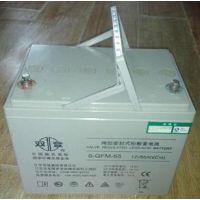 双登蓄电池 双登6-GFM-65电池 双登12V65AH电池 双登ups电池 双登蓄电池价格
