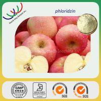 100% pure apple phloridzin