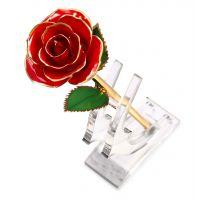 24k镀金玫瑰花鲜花玫瑰 配插花底座 情人 朋友 节日 新年结婚礼物
