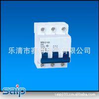 供应SPB2Z-125系列直流小型断路器 漏电断路器 断路器