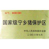 四大名猪 宁乡花猪 传统熟食喂养 保证猪肉品质 沙河土花猪