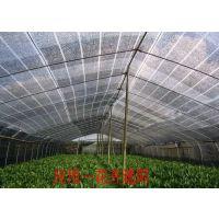 批发绿色遮阳网,黑色遮阳网, 农用大棚遮阳网,规格齐全,欢迎订购