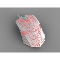 探索光电鼠标的奥妙|广东光电鼠标加工