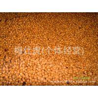 樱花种子/ 冬樱花 种子 花卉种子 种子批发 苗木种子