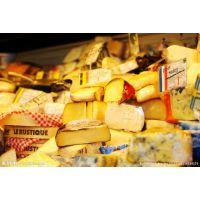 上海港进口荷兰瑞典新西兰芬兰澳洲奶酪芝士报关