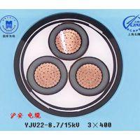 申环牌 无锡市沪安电缆销售BV-35照电线电缆 全国产品