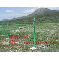 宣城双边丝护栏网价格 黄山浸塑护栏网有几种规格