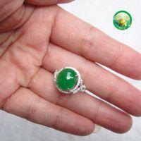 腾冲【御鑫】品牌上新季,祖母绿翡翠戒指,铂金镶嵌翡翠A货